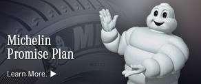 The Michelin Promise Plan